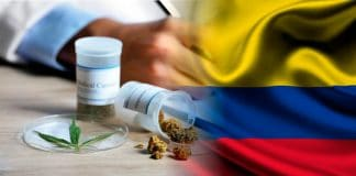 colombia-cannabis-marihuana