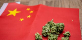 china-cannabis-marihuana-mota