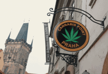 El Cannabis es Legal en Praga