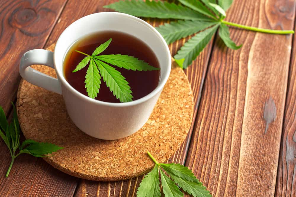 Infusiones Cannabica