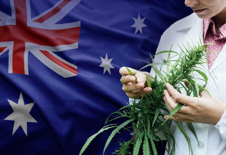 Despenalizan el cannabis en la capital de Australia